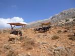 Strand Balos - Insel Kreta foto 28
